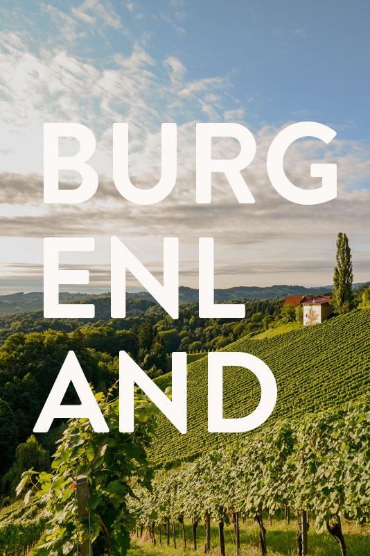 Vorschaubild Burgenland Projekte Werbeagentur